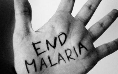 Public Health Ministry crafting Malaria battle plan