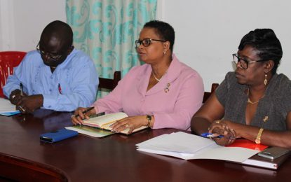 Health Minister hosts emergency meeting with RHOs, regional officials