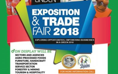Linden Expo – linking businesses and potential investors