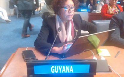 Guyana progressing with 2030 Sustainable Agenda  – Min. Garrido-Lowe at UN forum