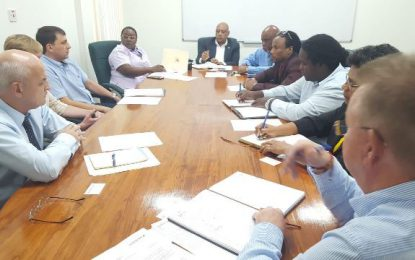 Ministers of Natural Resources and Region 10 MPs Meet Officials of Rusal and Oldendorff
