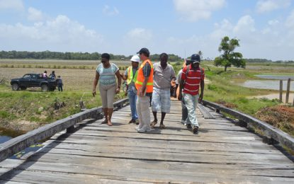Region 2 residents call for rehabilitation of Queenstown High Bridge in Essequibo.
