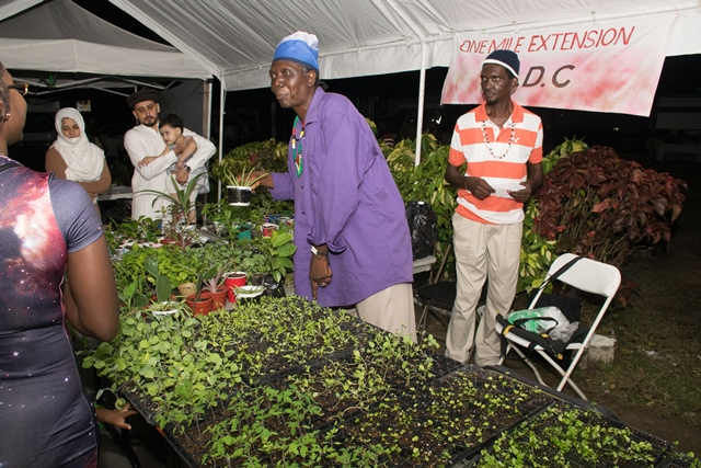 One Mile Extension CDC promotes kitchen gardens