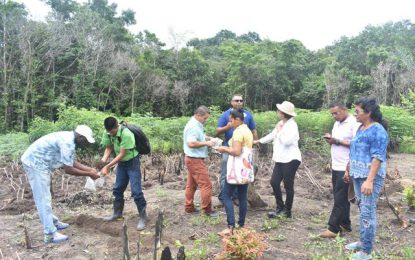 MoIPA provides Technical Assistance to farmers of Moruca Sub-district
