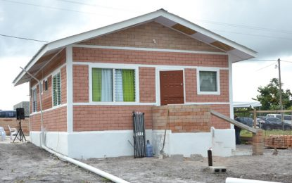 LEN introduces low cost homes built from bauxite waste