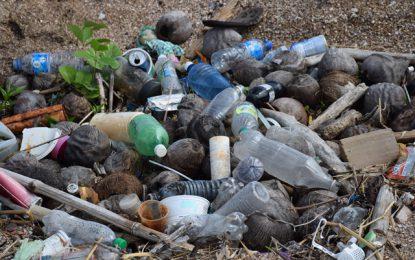 Careless dumping of single-use plastics harming the environment -Department of Environment