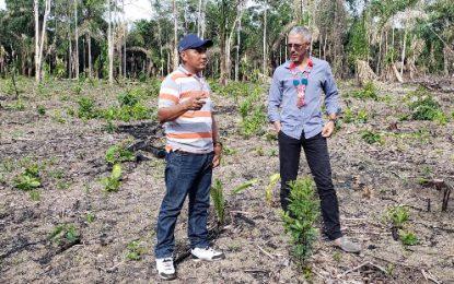 Moraikobai Eco-Tourism Project underway