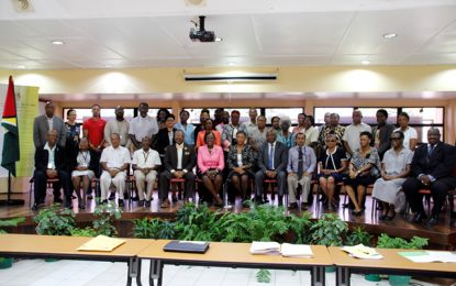 Consultation held on the development and enhancement of language programmes in the education system