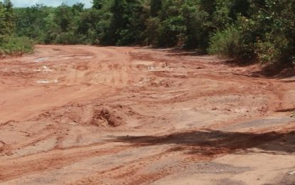 Lethem trail to become operable soon – Minister Patterson