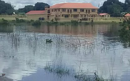 Update on Rupununi Flooding Situation