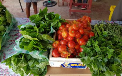 Guyana receives $140M for resilience building in Agriculture sector