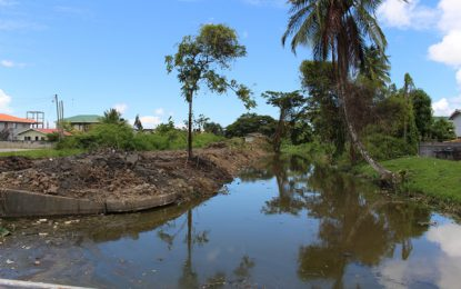 Public Infrastructure Ministry conducts drainage exercise at South Lamaha Springs