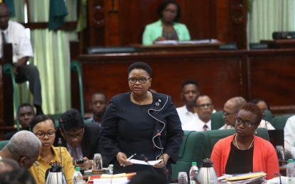 Every neonatal death is investigated – Minister Lawrence tells National Assembly