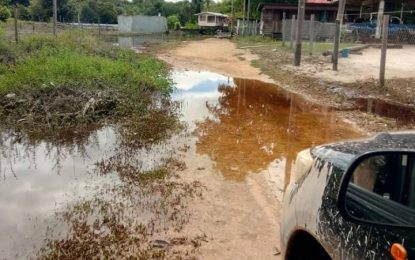 Kwakwani floodwater recedes significantly