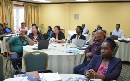 University Lecturers laud PAHO/WHO workshop