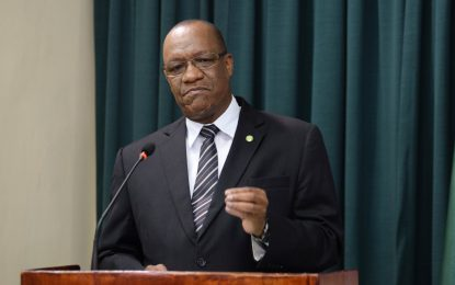 Green Paper on Natural Resources Fund for National Assembly