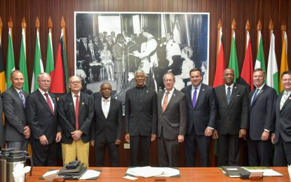 President Granger meets with delegation from US Congress