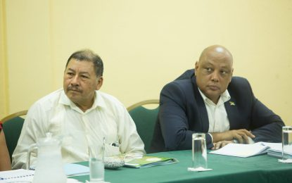 Key stakeholders meet to advance phasing out use of mercury