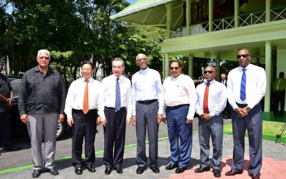 China's State Councilor pays courtesy call on President David Granger
