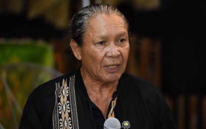 Importance of translating Indigenous language highlighted
