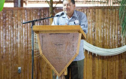 Seven Upper Mazaruni communities yet to agree to land demarcation process