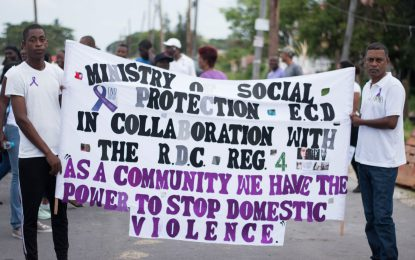 Rave reviews for Region Four RDC Domestic Violence Walk