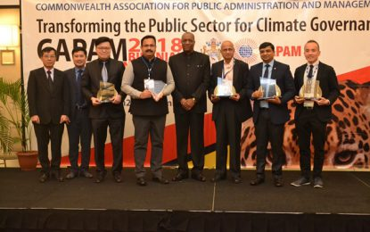 CAPAM awards innovation in the private sector