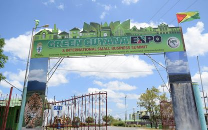 Green Expo offers vision of Guyana's future
