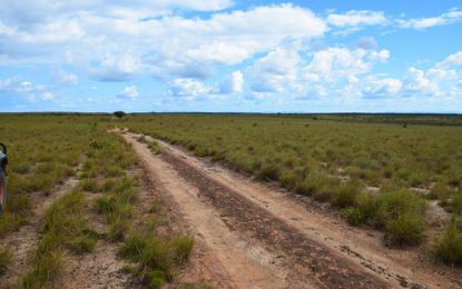 Major 70-mile road to link North and Central Rupununi