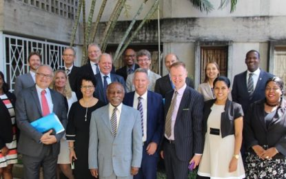 EU-GUYANA POLITICAL DIALOGUE JOINT PRESS RELEASE