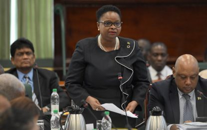Min Lawrence defends use of private insurance companies