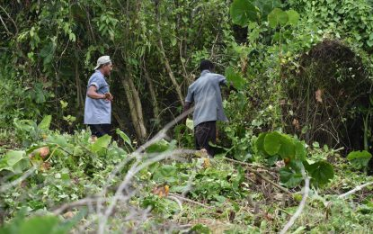 Sophia residents, Min. Broomes, GPF, join forces for clean-up exercise