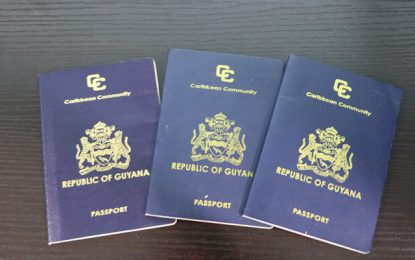 Central Immigration Passport Office – Department of Public