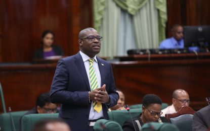 Min. Patterson exposes SN for publishing Opposition's baseless claims about Civil Aviation Bill