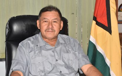 External forces will seek to capitalise on Guyana's political situation – Min Allicock warns