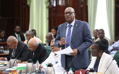 Presidency's 2019 capital spending approved