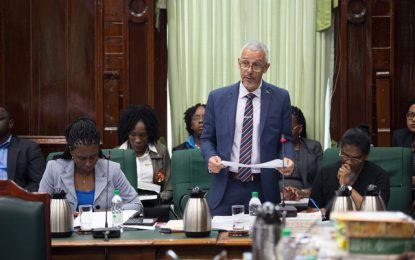 Resolution of no-confidence motion will set a valuable precedent – Min. Gaskin