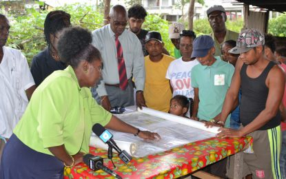 Plantation Belle-West squatters to be regularised