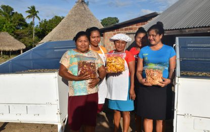 Dried fruit is big business – Shulinab Women's Group cashing in