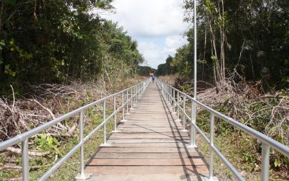 Newly constructed Wakapoa Bridge an Answer to prayers – residents