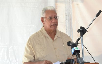 $334M Pump commissioned at Herstelling