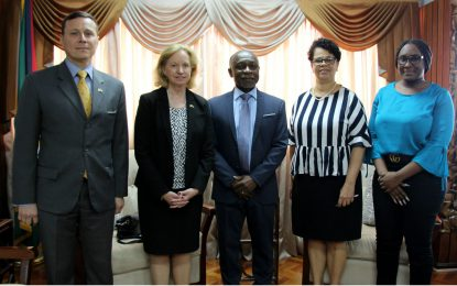Newly Accredited American Ambassador Pays Courtesy Call on Foreign Minister