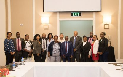 Ministry of Natural Resources successfully hosts South African Delegation