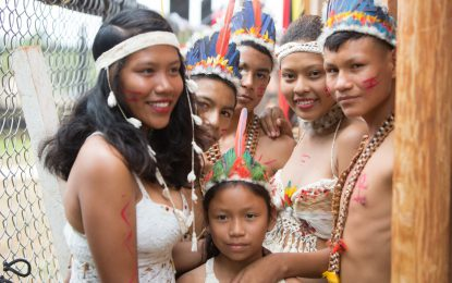 Publications to observe Year of Indigenous Languages