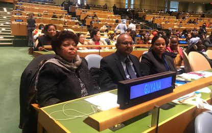 Min. Ally representing Guyana at 63rd Session on Status of Women Commission