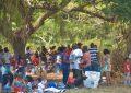 Kites, families and fun – scores flock Joe Vieira Park