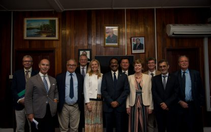 Democracy is working in Guyana – EU Ambassador