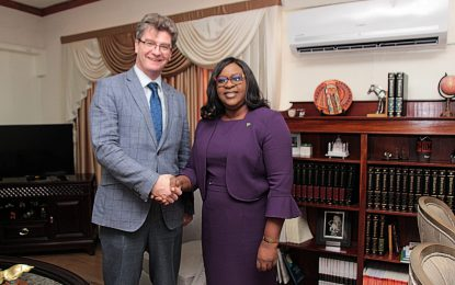 UK High Commissioner Calls on Foreign Minister