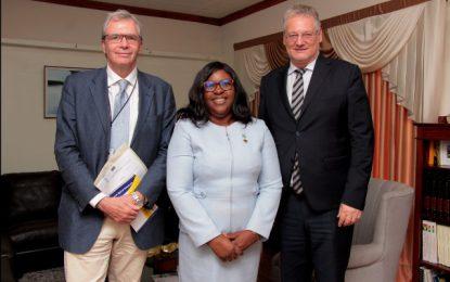 EU Ambassador Calls on Foreign Minister