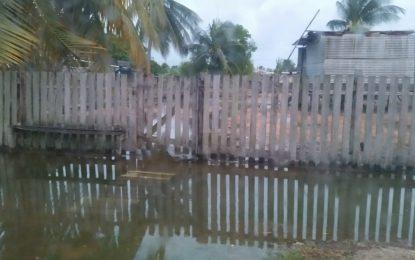 Heavy flooding at Zeelugt averted